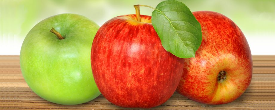Ernährungsberater Ausbildung