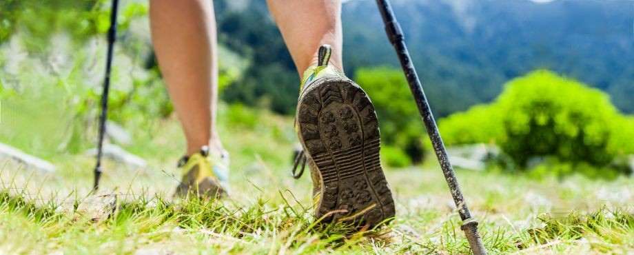 Nordic Walking Instructor bei der Medical Fitness Academy